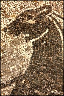 Thermal Baths at Fuorigrotta - Mosaics
