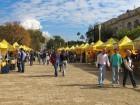 Campagna Amica Coldiretti Market